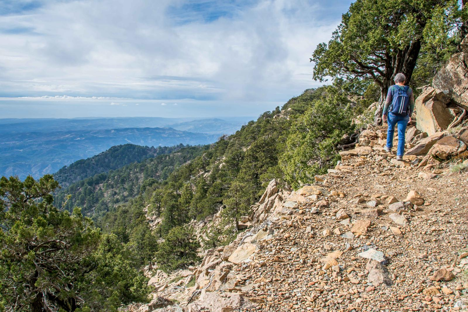 Artemis Hiking Trail